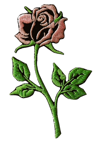 rose pour vans